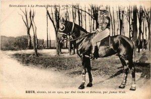 PC CPA KOEUR alezan chestnut HORSES SPORT (a14316)