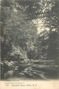 Cascadilla Gorge Ithaca New York NY 1905 UNDivided Back