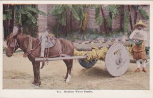Mexico Typical Mexican Water Carrier With Horse & Wagon sk3339