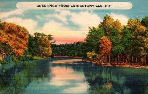 New York Greetings From Livingstonville