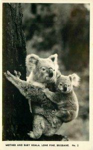 Australia Baby Koala Lone Pine Brisbane #2 RPPC Photo Postcard 7838