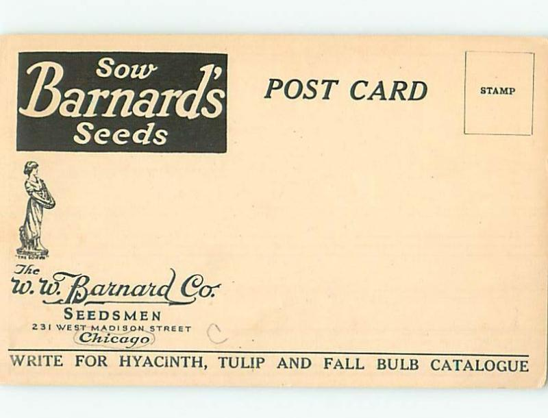 Divided-Back Postcard Ad SEEDS ADVERTISING ON BACK Chicago Illinois IL HJ7171