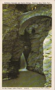 New York Watkins Glen Entrance Cascade and Sentry Bridge Dexter Press