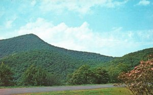 Western NC, Mt. Pisgah from Blue Ridge Parkway, Chrome Vintage Postcard g8934