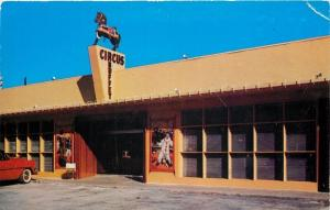 Clearwater Beach FL~Show Horse Atop Circus Buffet Sign~Clown~1950s Postcard