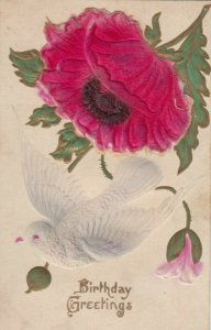 BIRTHDAY, 1900-10s; Embossed, Greetings, Red Flower & Dove