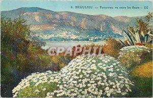 Old Postcard Beaulieu Panorama seen among flowers