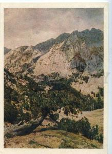 130970 ALBANIA mountain landscape old postcard