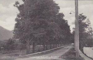 Pennsylvania Athens North Elmira Street Albertype