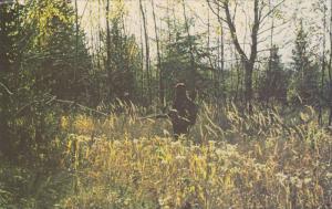 Le festival d'automne a Rimouski,  Quebec,  Canada,  40-60s