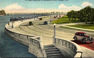 Florida Tampa East Entrance To Bayshore Boulevard Curteich