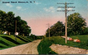 New York Country Road Scene Near Madalin 1916