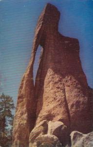 South Dakota Black Hills The Needle's Eye On Needles Highway Custer State Park