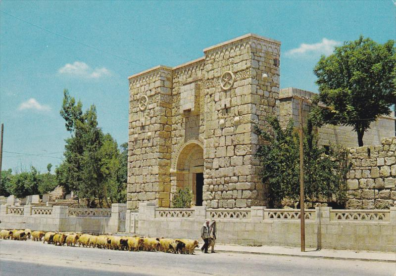 St. Paul's Window, Herd of Sheeps, DAMASCUS, Syria, 50-70's