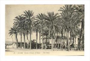 ALGER. Jardin d'Essai. L'Oasis, 00-10s   Algeria