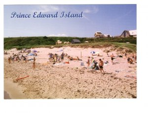 Sandy Beach, Prince Edward Island, Large 5 X 7 Postcard