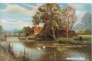 Berkshire Postcard - Woolhampton - Ref 5315A