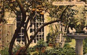California Hollywood Ivar House rRestaurant A Corner Of The Garden 1949