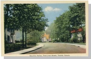 Toronto, Ontario, Canada Postcard, Tree-Lined Streets/Homes
