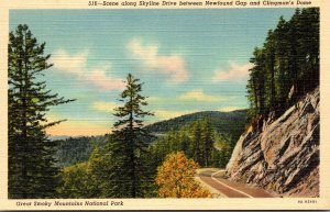 Tennesse Smoky Mountains National Park Skyline Drive Between Newfound Gap & C...
