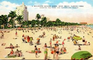 Florida Miami Beach Mid Winter Bathing Scene Showing Tides and Netherlands Ho...
