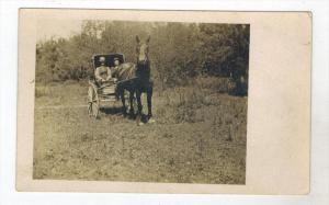 148  Couple in  Horse drawn Carriage RPC