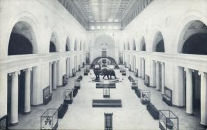 Chicago, Ill., Natural History Museum Stanley Field Hall 1940s Elephant Postcard