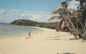 Golden Sands Of Mana Island Japan Postcard