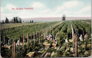 Oregon Hopfield Agriculture Workers Pickers AYPE Unused Postcard G89
