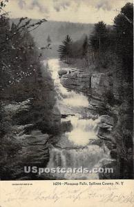 Mongaup Falls Mongaup Falls NY Postal used unknown