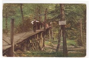 Bridge Eastern Springs Benton Harbor Michigan 1919 postcard