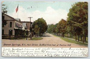 Sharon Springs New York~Main Street~Foot of Pavilion Hill~Stores~Homes~1906 PC