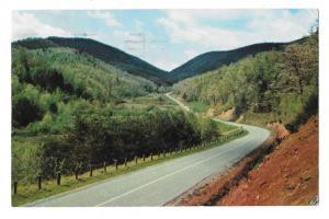 Georgia Unicoi Gap State Hwy 75 Blue Ridge Mts K Rogers Photo 1959 Postcard