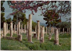 Greece, OLYMPIA, PALAESTRA, used Postcard