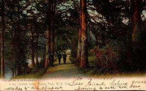 New York City Bronx Park Lovers Lane 1906 Rotograph