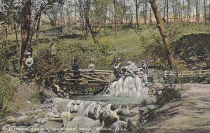 PEORIA, Illinois, 1900-1910s; Sulphur Spring, Glen Oak Park