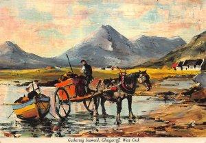 Gathering Seaweed Glengarriff West Cork Horse Carriage Postcard
