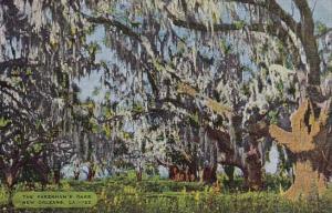 Louisiana New Orleans The Pakenhams Oaks