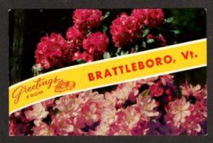 VT Greetings from BRATTLEBORO VERMONT Postcard Flowers