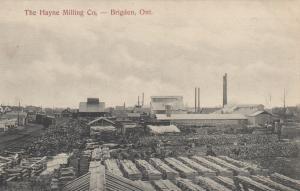 BRIGDEN , Ontario , 1910 ; The Hayne Milling Company