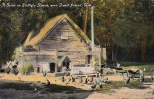 Nebraska Grand Island Scene On Stolley's Ranch Curteich