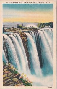 New York Niagara Falls Terrapin Point From Goat Isle