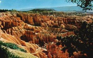 Bryce Canyon Nat'l Park, Utah, UT, Unused Chrome Vintage Postcard g9235