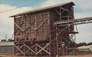 Abandoned Orange Conveyer, Avon Park, Florida,United States, 40's-60´s