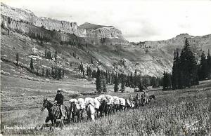 RPPC of a Pack Train off the High Country WY,CO or ?
