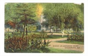 Scene in Standish Park, Galesburg, Illinois, 00-10s