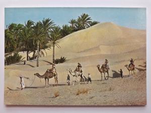 Tunisia, Africa, 1706, Caravan in the Sahara, Vintage Postcard