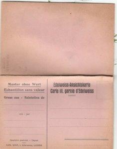 SWITZERLAND, 00-10s; Edelweiss-Ansichtskarte
