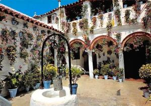 Spain Espana Tipica, Typical Andalusian Court Flowers in Vases Postcard