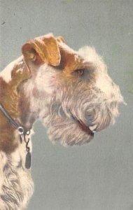Fox Terrier Dog Unused